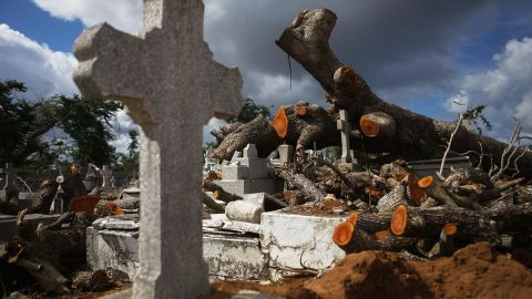 SAN JUAN, PUERTO RICO - DECEMBER 23:  A tree toppled by Hurricane Maria rests over damaged graves in the Villa Palmeras cemetery on December 23, 2017 in San Juan, Puerto Rico. Barely three months after Hurricane Maria made landfall, approximately one-third of the devastated island is still without electricity. While the official death toll from the massive storm remains at 64, The New York Times recently reported the actual toll for the storm and its aftermath likely stands at more than 1,000. A recount was ordered by the governor as the holiday season approached.  (Photo by Mario Tama/Getty Images)