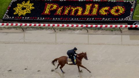 Kentucky Derby winner Justify gallops in preparation for the Preakness at Pimlico Race Course on May 15, 2018, in Baltimore.