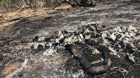 A burnt rubber hose on the ground in Kissufim, close to the Israeli border with Gaza.