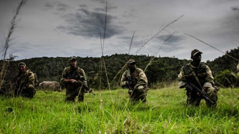 An anti-poaching unit kneels near a rhino in an undated file photo from Sibuya Game Reserve.