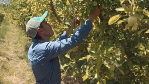 Colorado farmer tariffs