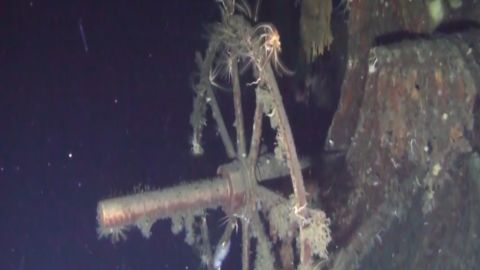 A picture supplied by the Shinil Group of the sunken ship.