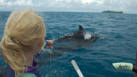 Mairen spots whales at a lagoon off the Hermit Islands in Papua New Guinea.
