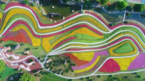 <strong>Nantong, China: </strong>Technicolor flowers are pictured in bloom at a green expo garden in east China's Jiangsu Province, north of Shanghai.
