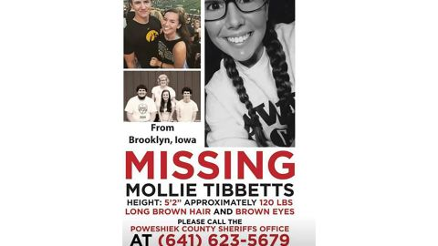 A poster for Mollie Tibbitts seeking information on her whereabouts.