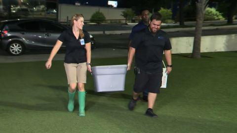 Staff members bring the stolen shark back to the San Antonio aqarium.