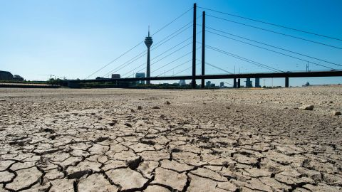 A look at the dried-up riverbed of the Rhine in Dusseldorf, Germany.
