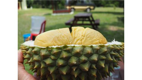 <strong>Durian hunter:</strong> Best known for their pungent aroma and starchy, custard-like texture, durians aren't for everyone.