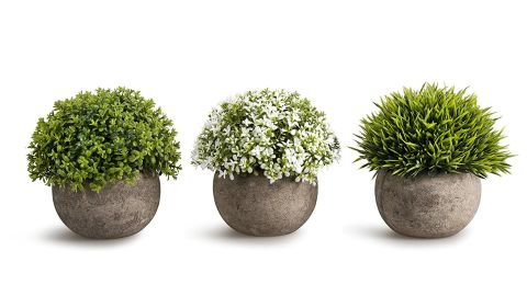 """<strong>OPPS Plastic Mini Plants -- Set of 3 (starting at $21.99; </strong><a href=""""https://amzn.to/2OqduTk"""" target=""""_blank"""" target=""""_blank""""><strong>amazon.com</strong></a><strong>)</strong>"""