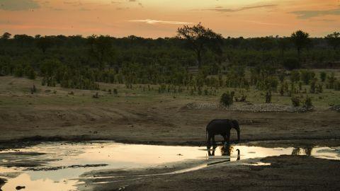 "In pockets of Southern Africa, <a href=""https://airshepherd.org/"" target=""_blank"" target=""_blank"">Air Shepherd</a> flies drones at night to track wildlife poachers."