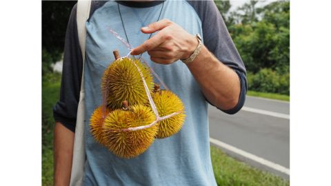 """<strong>Durian diaries:</strong> Based in Penang, Malaysia, she also leads durian tours and has penned two guide books, including recently published """"The Durian Tourist's Guide to Penang""""."""