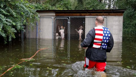 Panicked dogs left caged by their owner are rescued by volunteer Ryan Nichols in Leland, North Carolina, on September 16.