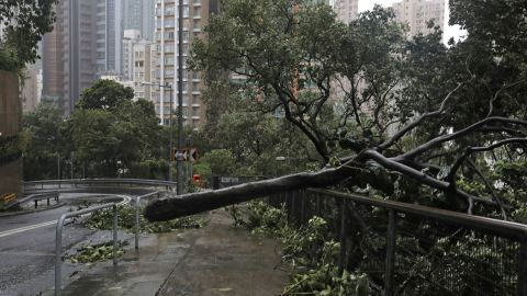 A fallen tree caused by Typhoon Mangkhut lies on a footpath in Hong Kong, Sunday, Sept. 16, 2018. Hong Kong and southern China hunkered down as strong winds and heavy rain from Typhoon Mangkhut lash the densely populated coast. The biggest storm of the year left at least 28 dead from landslides and drownings as it sliced through the northern Philippines. (AP Photo/Vincent Yu)