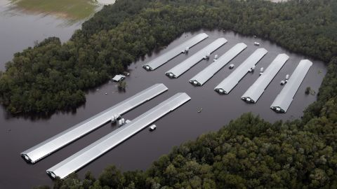 Chicken farm buildings are inundated with floodwater from Hurricane Florence near Trenton, North Carolina, Sept. 16, 2018.