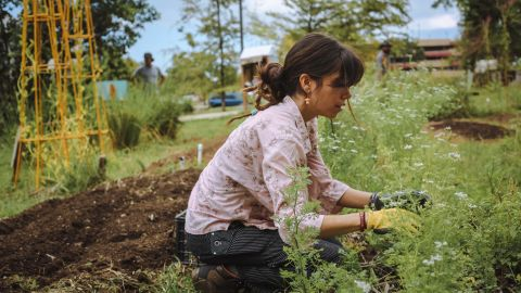 A volunteer with the Resilience Fund, working to rescue Puerto Rico's farms and local food supply after Maria.