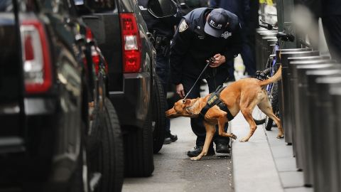 NEW YORK, NY - OCTOBER 24:  A Police bomb sniffing dog is deployed outside of the Time Warner Center after an explosive device was found this morning on October 24, 2018 in New York City. CNN's office at the center was evacuated after a package arrived that was similar to suspicious packages found near the homes of Bill and Hillary Clinton, the Obamas and billionaire philanthropist George Soros.  (Photo by Spencer Platt/Getty Images)