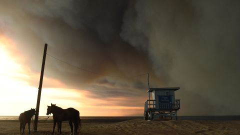 Horses are tied to a pole on the beach in Malibu as the Woolsey Fire comes down the hill Friday.