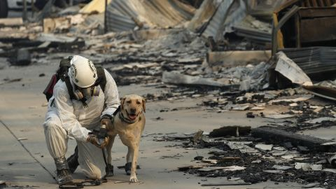 A search and rescue worker tends to his dog while searching for human remains at the Camp Fire, Friday, Nov. 16, 2018, in Paradise, Calif. (AP Photo/John Locher)