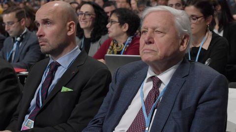 Natural historian Sir David Attenborough (R) listens to speeches during the COP24 summit on climate change in Katowice, Poland, on December 3, 2018. (Photo by Janek SKARZYNSKI / AFP)        (Photo credit should read JANEK SKARZYNSKI/AFP/Getty Images)