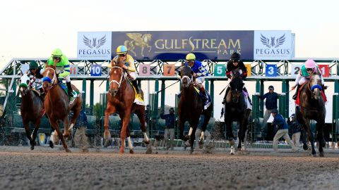 The Pegasus World Cup was the richest horse race in 2018.