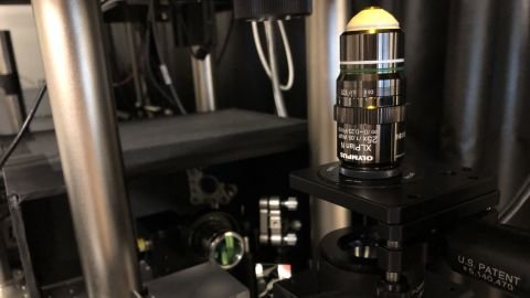 MIT nano laser   MIT invents method to shrink objects to the nanoscale photo Courtesy of Edward Boyden and MIT researchers