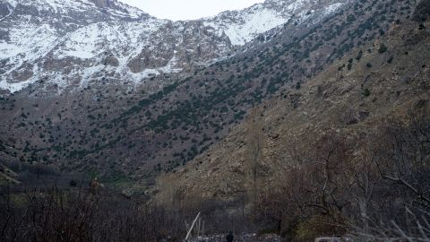 The tourists' bodies were discovered in the High Atlas mountain range.