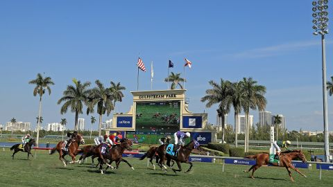 The 2019 edition will include a new turf-race, which hopes to attract a more international field. The $16 million purse will not be split between the two Grade 1 races.