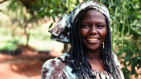 Kenyan environmental and political activist Wangari Maathai was the first African woman to receive the Nobel Peace Prize. She earned her bachelor's and master's degrees in the United States.