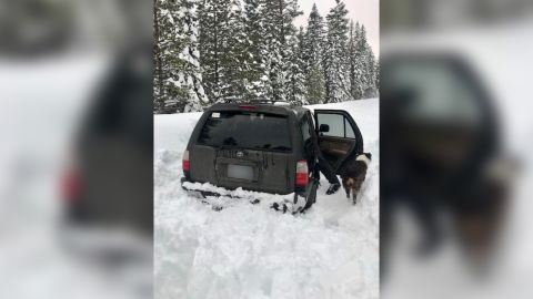 Jeremy Taylor and his dog, Ally, were stuck in the snow for five days and survived on taco sauce, according to the Deschutes County Sheriff's Office in Bend, Oregon.
