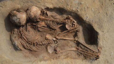 The remains of 137 children and 200 llamas were found in Peru in an area that was once part of the Chimú state culture, which was at the peak of power during the 15th century. The children and llamas might have been sacrificed due to flooding.