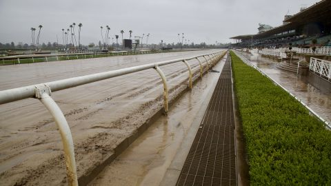 Santa Anita Park has closed at least through the weekend because of a high number of horse deaths.