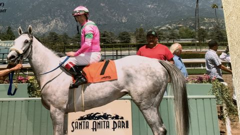 Santa Anita Park was shut down earlier this month after Let's Light the Way had to be euthanized.