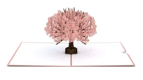 """<strong>Lovepop Cherry Blossom Pop Up Card ($10.98; </strong><a href=""""https://amzn.to/2ZzTjbV"""" target=""""_blank"""" target=""""_blank""""><strong>amazon.com</strong></a><strong>)</strong>"""