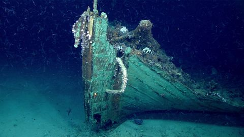 A close-up view of the bow. Marine life is prevalent on the wreck except on the copper sheathing which still retains its antifouling ability to keep the hull free of marine organism like Teredo navalis (shipworm) that would otherwise burrow into the wood and consume the hull, or barnacles that would reduce the vessel's speed.