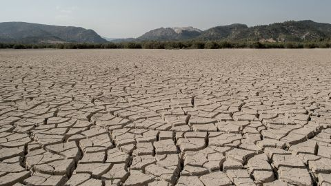 ZARCILLA DE RAMOS, SPAIN - JULY 28:  Dried cracked mud is seen at the Valdeinfierno reservoir on July 28, 2017 in Zarcilla de Ramos, Spain. Valdeinfierno is one of the Spain's oldest reservoir which was used to feed the fields of Lorca and Totana and nowadays is absolutelly unusable due to cracks on the dam and mud level on its bed. As the severe drought in Spain's Southeastern regions of Albacete, Guadalajara, Murcia and Almeria continues for a second straight year, water levels of the region's main reservoir are worryingly low. Despite of the national water levels are currently near 50% of its total capacity, the main reservoir feeding these regions are below 13% of their capacity. This prolonged drought and how the government is managing the water sharing among these regions are deeply hitting their economy. According to the Spain's environment ministry figures, Southern Spain's deserts are spreading and a third of the country is at risk of suffering a process of desertification as climate change, droughts, tourism add to farming pressure on the southeastern regions of Spain.  (Photo by David Ramos/Getty Images)