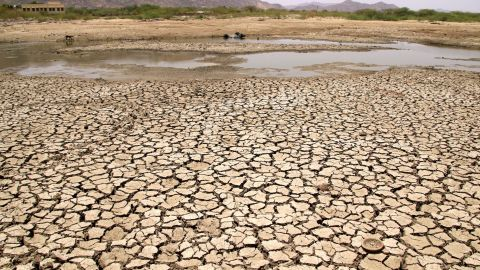 TOPSHOT - A general view of a lake running dry on a hot summer day near Ajmer on June 2, 2019. - Temperatures passed 50 degrees Celsius (122 Fahrenheit) in northern India as an unrelenting heatwave triggered warnings of water shortages and heatstroke. (Photo by Himanshu SHARMA / AFP)        (Photo credit should read HIMANSHU SHARMA/AFP/Getty Images)
