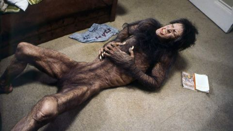 """<strong>""""An American Werewolf in London""""</strong>: Two American students backpacking in Northern England when they are attacked by a werewolf in this horror comedy. <strong>(Hulu) </strong>"""
