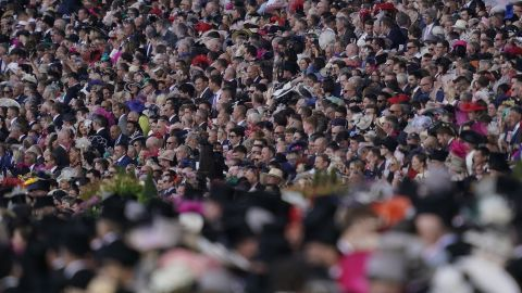 The huge crowd is gripped to the action as the Gold Cup unfolded.