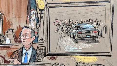 A video of the car attack was shown in court Friday before sentencing.