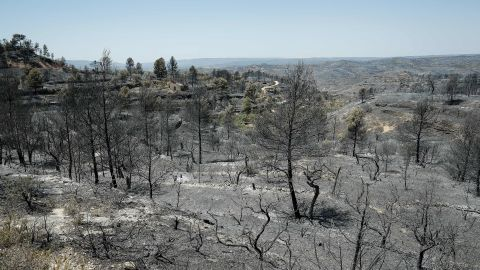 June 28, 2019 -- a forest fire in Catalonia, Spain,  burned more than 6,500 hectares of land.