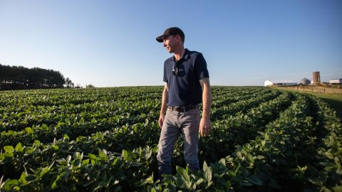 Justin Jordan in his fields, which were planted a month late this year because of freak weather.