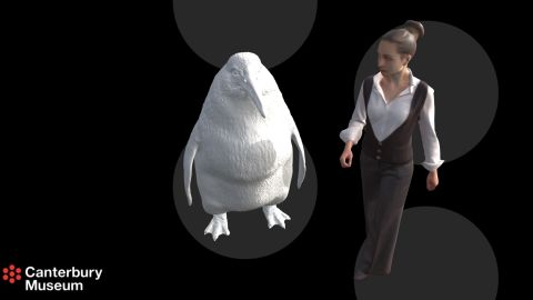 The giant penguins could reach around 1.6 meters (5 feet 3 inches) in height.