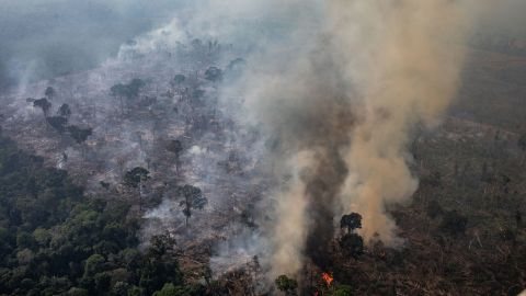 In this aerial image, a fire burns in a section of the Amazon rain forest on August 25, 2019 in Porto Velho, Brazil.