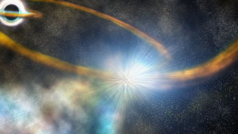 After passing too close to a supermassive black hole, the star in this artist's conception is torn apart into a thin stream of gas, which is then pulled back around the black hole and slams into itself, creating a bright shock and ejecting more hot material.  Illustration is by Robin Dienel, courtesy of the Carnegie Institution for Science.