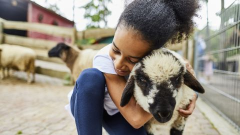 Children who grow up around farm animals, dogs or cats typically have stronger immune systems and a reduced risk of developing eczema.