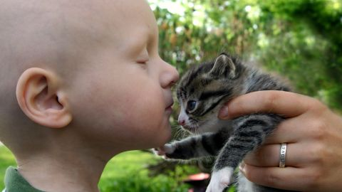 Providing pet therapy to children undergoing cancer is a common practice. Parents report children are happier, more social and more compliant with treatment after a visit with a furry friend.