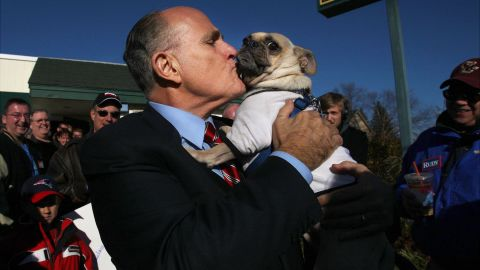 """Giuliani kisses Thompson the pug while campaigning in New Hampshire in November 2007. The dog was wearing a shirt that said, """"Anybody but Hillary for president."""""""