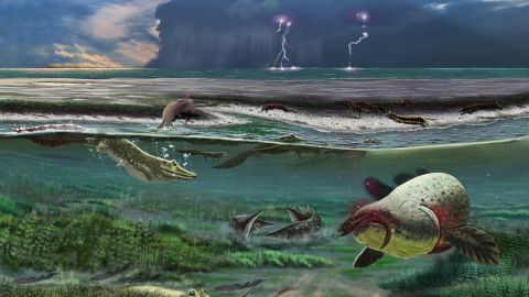 The Sosnogorsk lagoon as it likely appeared 372 million years ago just before a deadly storm, according to an artist's rendering. The newly discovered tetrapod can be seen in the left side of the image below the surface.