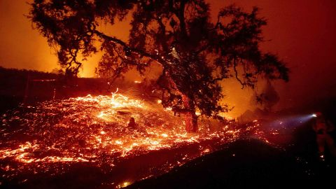 Embers fly from a tree as the Kincade Fire burns near Geyserville, Calif., on Thursday, Oct. 24, 2019. Portions of Northern California remain in the dark after Pacific Gas & Electric Co. cut power to prevent wildfires from sparking during dry and windy conditions. (AP Photo/Noah Berger)