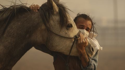Fabio Losurdo comforts his horse, Smarty, at a ranch in Simi Valley on October 30.